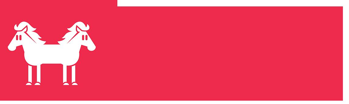 DSlogoV2_horizontal